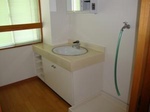西早稲田ロータスビル 洗面室