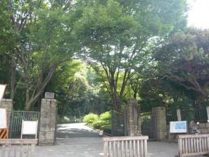 クレッセント池田山 池田山公園