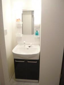 秀和月島レジデンス 洗面室