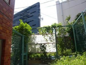 ライオンズマンション目黒第5 眺望