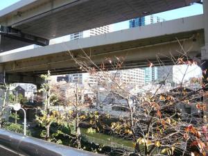 ツイン一の橋2号棟 眺望