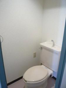 ビッグストーン池袋 トイレ