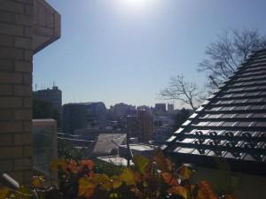 下落合ガーデンハウス 眺望