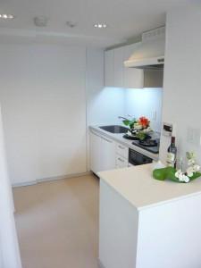パークアクシス白金台南 キッチン