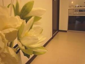 松涛マンション 室内の植物