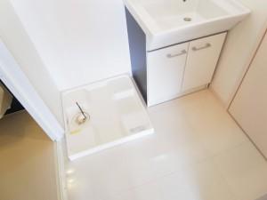 チサンマンション自由ヶ丘  洗面室