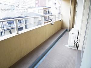 ディナ・スカーラ新宿  バルコニー