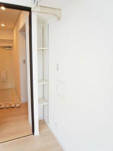 スカイコート駒沢  洋室1収納