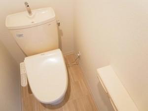 ライオンズマンション北品川第2 トイレ