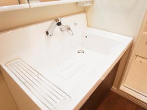 第2桜新町ヒミコマンション 洗面台