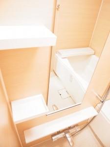 第2桜新町ヒミコマンション バスルーム