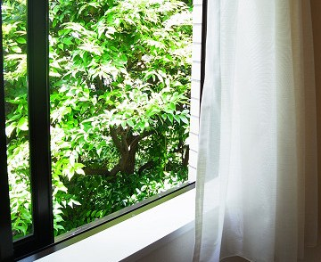 ステートリーホームス代々木上原 窓