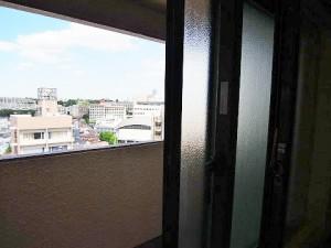 コンドミニアム池尻 洋室1 窓