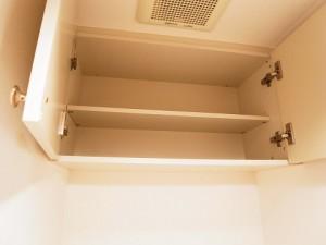 菱和パレス銀座八丁目  トイレ