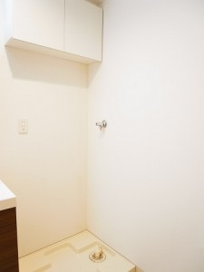 ディナ・スカーラ新宿 洗濯機置場