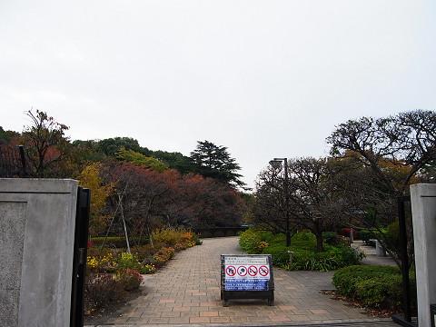 メイツ哲学堂公園 周辺