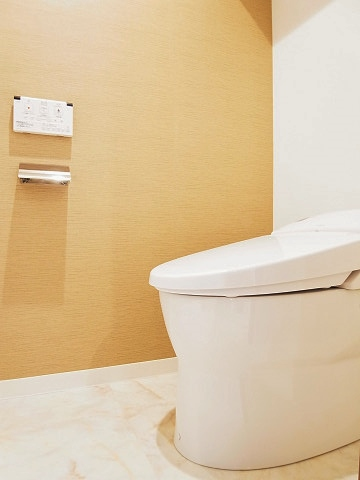 シャンボール柿の木坂 トイレ