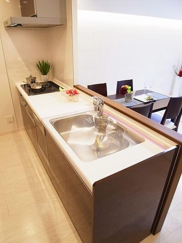 シャンボール柿の木坂 キッチン