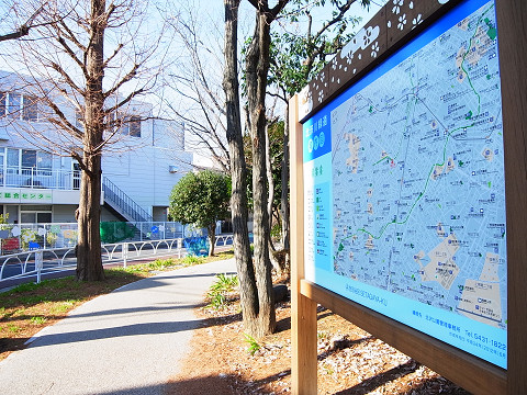 ライオンズマンション経堂第2 緑道