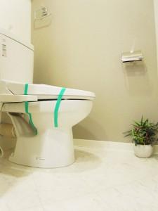 藤和大蔵コープ トイレ