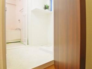 藤和大蔵コープ 洗面室