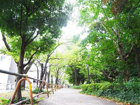 クレードル駒沢公園