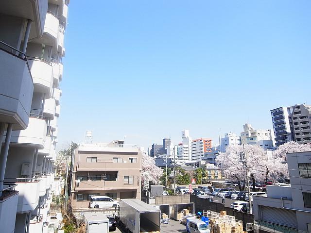 新宿フラワーハイホーム 眺望