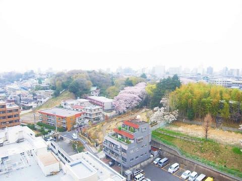 高田馬場住宅 眺望